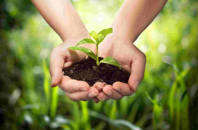 KETs Impact: Agricultural residues into bio-based chemicals - Lignoflag project